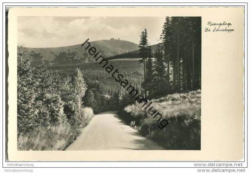 Schneekoppe - Graf Friedrich Schaffgotsch-Weg - Foto-AK 30er Jahre