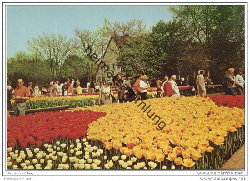 Berlin - Tiergarten - Englischer Garten - AK Grossformat