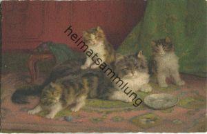 Katzenfamilie - Katzenmama und drei Junge