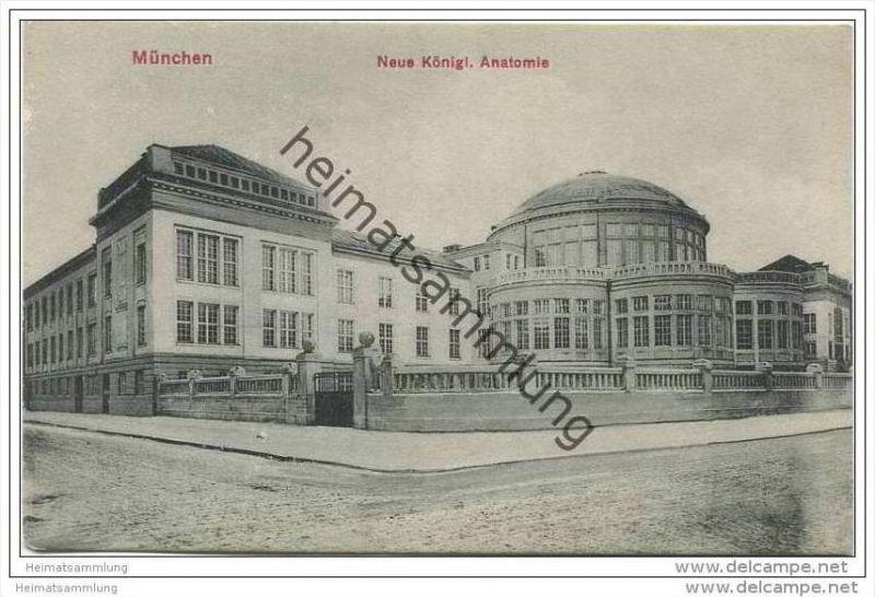 München - neue königliche Anatomie