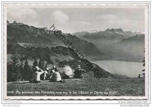 Au sommet des Pleiades vue sur le lac Leman et Dents du Midi - Foto-AK