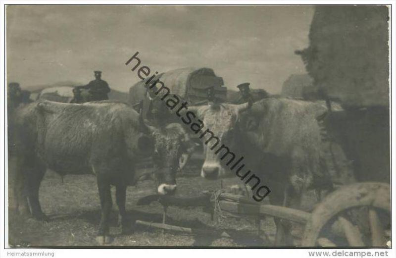 Bulgarischer Zug in Mazedonien - Militär - Ochsenkarren - Foto-AK ca. 1915