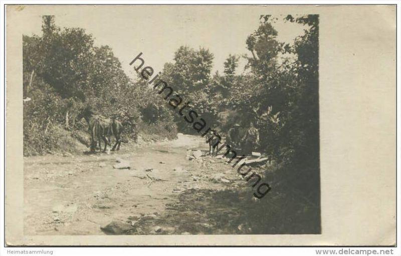 Mazedonien - Militär - Pferde und Muli - Foto-AK ca. 1915