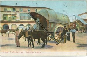 Cuba - Habana - Carromato - A Merchant Cart - Verlag The Rotograph Co. New York