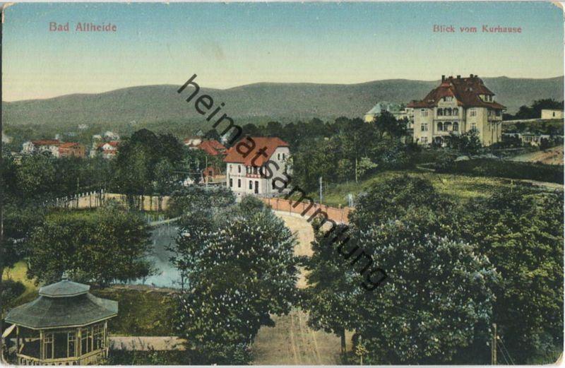 Bad Altheide - Blick vom Kurhaus - Verlag R. Sponer Neisse 1910