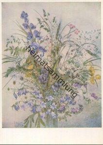 Sulamith Wülfing - Sommerblumen - Serie 5 Bild 6 - Sulamith Wülfing-Verlag Wuppertal-Elberfeld 1969
