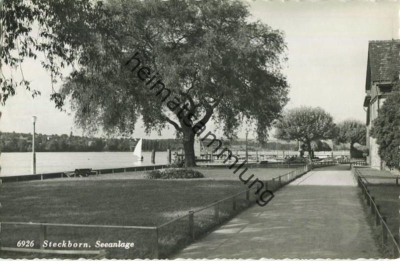 Steckborn - Seeanlage - Foto-AK - Verlag Rud. Suter Oberrieden - Rückseite beschrieben