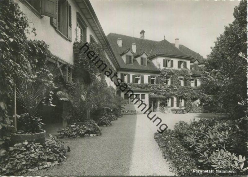 Mammern - Kuranstalt - Foto-AK Grossformat - Verlag J. Gaberell Thalwil gel. 1951