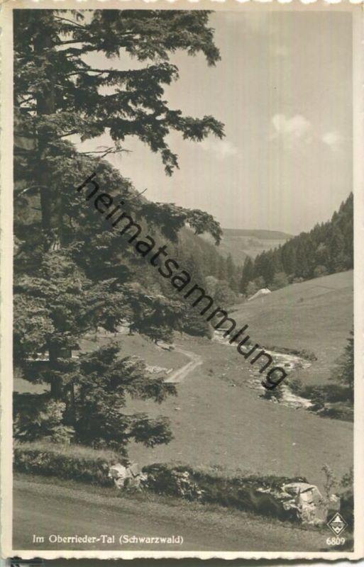 Im Oberrieder Tal - Foto-Ansichtskarte - Verlag Karl Alber Freiburg