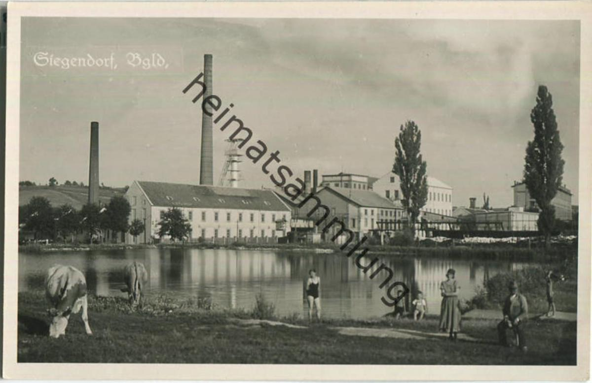 Siegendorf - Burgenland - Foto-Ansichtskarte 0