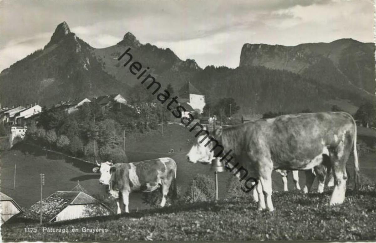 Paturage en Gruyeres - Foto-AK - Edition O. Sartori Lausanne gel. 1954