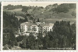 Grand Hotel Bürgenstock - Foto-Ansichtskarte - Luftbild Alpar Bern - Verlag O. Wyrsch Belp-Bern