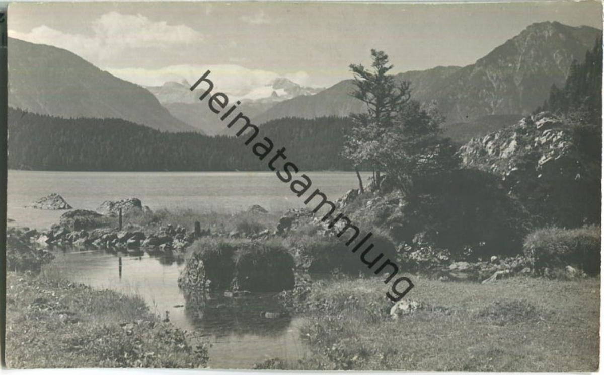 Altaussee - Seewiese - Foto-Ansichtskarte 20er Jahre - Verlag Jos. Kain Mitterndorf