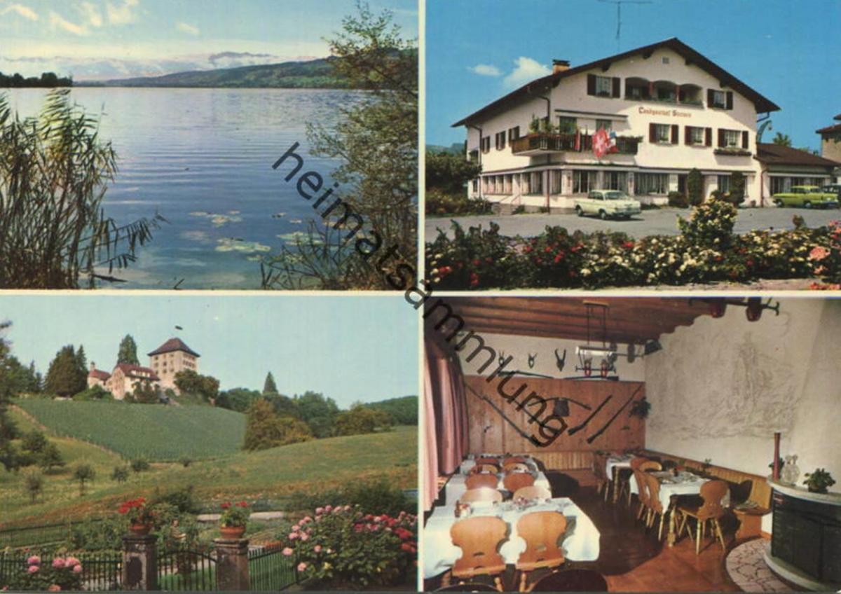 Gelfingen am Baldeggersee - Landgasthof Sternen - Inhaber K. Wyss-Rüttimann - AK Grossformat - Verlag Globetrotter Luzer
