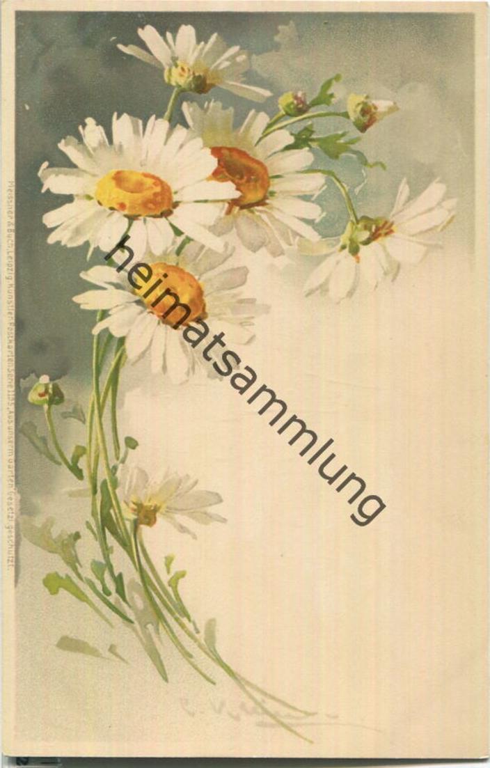Catharina C. Klein - Verlag Meissner & Buch Leipzig Serie 1195 - Aus unserem Garten