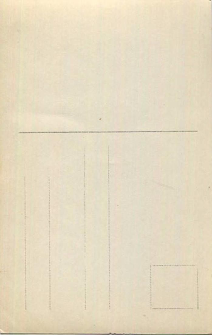 Großherzog Großherzogin und Erbgroßherzog von Mecklenburg-Schwerin - Verlag Fritz Heuschkel Schwerin 1