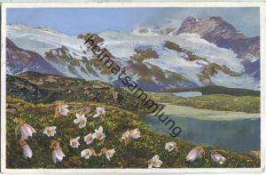 Engadin - Bernina Pass - Frühlingskuhschelle