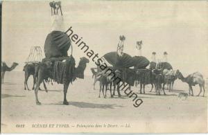 Scenes et Types - Palanquins dans le Desert