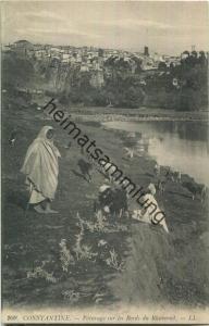 Constantine - Paturage sur les Bords du Rhummel