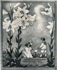 10 x Original-Werbung/ Anzeige 1908 bis 1915 - SUNLICHT / SUNLIGHT PRODUKTE /  GANZE SEITEN - MEIST 180 x 250 mm