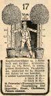 10 x Original-Werbung/ Anzeige 1899 bis 1910 - GARTENBAU PETERSEIM - ERFURT - UNTERSCHIEDLICHE GRÖSSEN