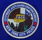 Bild zu NYPD Gang Unit Patch
