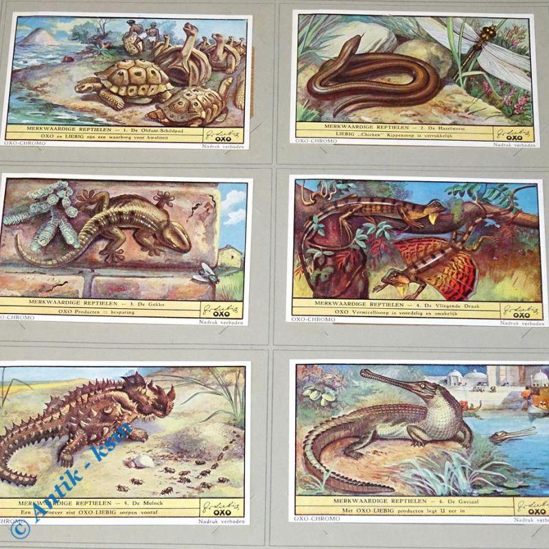 6 Liebig Chronos Sammelkarten , Merkwaardige Reptielen , Nr 1 bis 6 , kfr