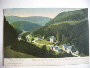 Alte AK Oberhof in Thüringen Litho um 1910 [125]