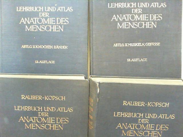 Kopsche, Friedrich und Rauber: Lehrbuch und Atlas der Anatomie des ...