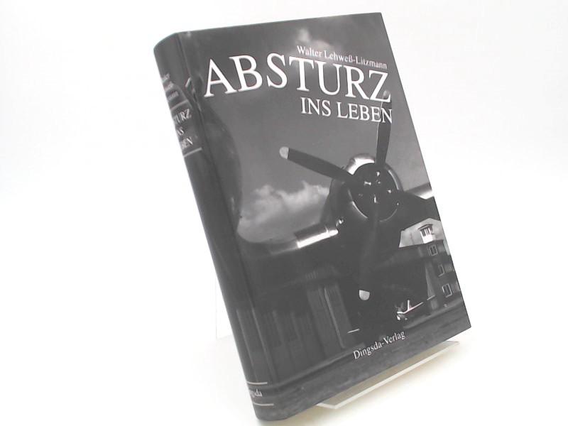 Lehwess-Litzmann, Walter und Jörn Lehwess-Litzmann (Herausgeber): Absturz ins Leben. Aufgeschrieben und herausgegeben von Jörn Lehwess-Litzmann, mit einem Fotoessay.