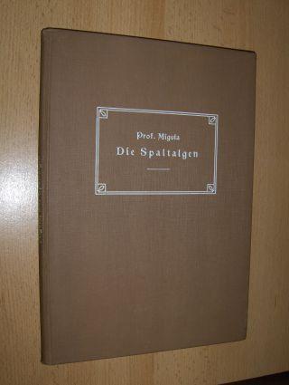 Migula, Dr. W.: Die Spaltalgen. Ein Hilfsbuch für Anfänger bei der Bestimmung der am häufigsten vorkommenden Arten nebst einer kurzgefaßten Anleitung zum Sammeln und Präparieren.