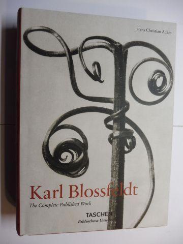 Adam, Hans Christian: KARL BLOSSFELDT 1865-1932 - The Complete Published Work *. (Photographische Pflanzenbilder). 0