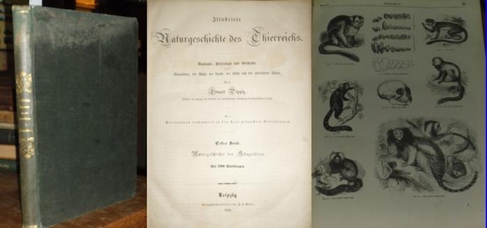 Pöppig, Eduard: Illustrirte Naturgeschichte des Thierreichs. Erster Band: Naturgeschichte der Säugethiere.