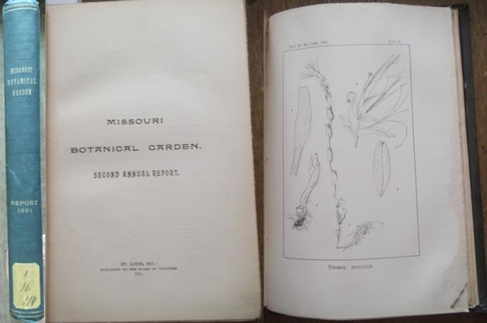 Missouri Botanical Garden. - Trelease, William: Missouri Botanical Garden. Second annual report. Scientific Paper: Revision of North American species of Epilobium- by William Trelease. 0