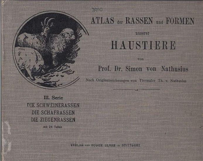 Nathusius, Prof. Dr. Simon von: Die Schweinerassen. Die Schafrassen. Die Ziegenrassen Mit 24 Tafeln. (= III. Serie des Atlas der Rassen und Formen unserer Haustiere ). Nach Originalzeichnungen von Tiermaler Th. v. Nathusius. 0