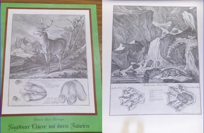 Ridinger, Johann Elias (1698 - 1767): Jagdbare Thiere und ihre Fährten. 0