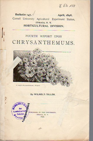Miller, Wilhelm: Fourth Report upon Chrysanthemums. (= Bulletin 147, April, 1898. Cornell University Agricultural Experiment Station. Ithaca, N. Y. Horticultural Division). 0