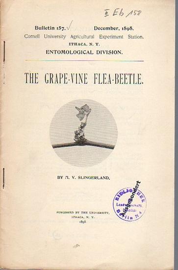 Slingerland, M. V.: The Grape-Vine Flea-Beetle. (= Bulletin 157, December, 1898. Cornell University Agricultural Experiment Station, Ithaca N. Y. Entomological Division). 0