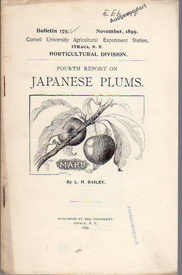 Bailey, L. H.: Fourth Report on Japanese Plums. (= Bulletin 175, November, 1899. Cornell University Agricultural Experiment Station, Ithaca, N. Y. Horticultural Division). 0