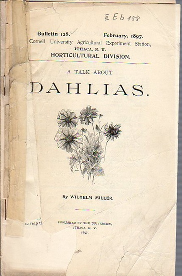 Miller, Wilhelm: A Talk about Dahlias. (= Bulletin 128, February, 1897. Cornell University Agricultural Experiment Station. Ithaca, N. Y. Horticultural Division.). 0