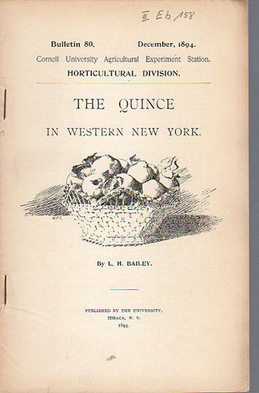 Bailey, L. H.: The Quince in western New York. (= Bulletin 80, December, 1894. Cornell University Agricultural Experiment Station. Horticultural Division.). 0
