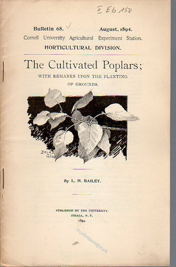 Bailey, L. H.: The Cultivated Poplars; with Remarks upon the planting of Grounds. (= Bulletin 68, August, 1894. Cornell University Agricultural Experiment Station. Horticultural Division.). 0