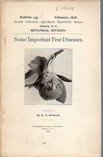 Duggar, B. M.: Some Important Pear Diseases. (= Bulletin 145, February, 1898. Cornell University Agricultural Experiment Station, Botanical Division). 0