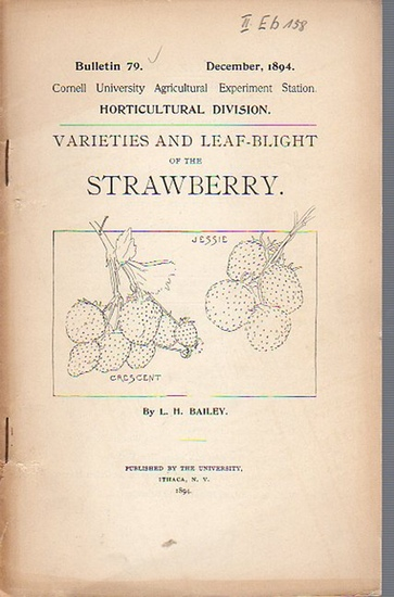 Bailey, L. H.: Varieties and Leaf-Blight of the Strawberry. (= Bulletin 79, December, 1894. Cornell University Agricultural Experiment Station. Horticultural Division.). 0