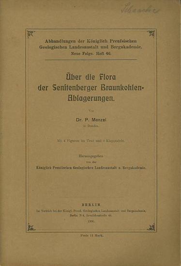 Senftenberg. - Braunkohle. - Menzel, P.: Über die Flora der Senftenberger Braunkohlenablagerungen. Hrsg. von der Königlich Preußischen Geologischen Landesanstalt.