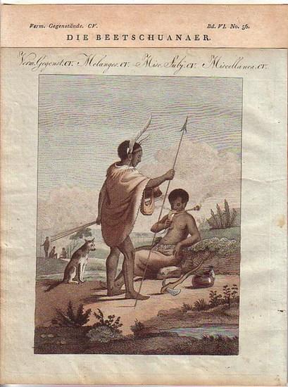 Afrika Ethnologie. - 1 farbige Graphik - 2 Beetschuanaer darstellend - mit beschreibendem Text.