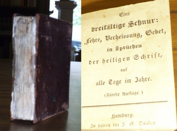 Biblia. - Oncken, Johann Gerhard: Eine dreifältige Schnur: Lehre, Verheissung, Gebet in Sprüchen der heiligen Schrift auf alle Tage im Jahre.