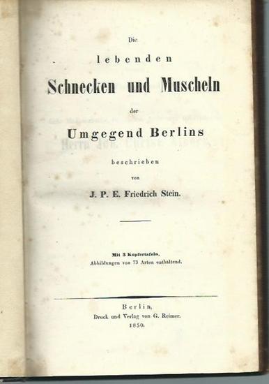Stein, J. P. E. Friedrich: Die lebenden Schnecken und Muscheln der Umgegend Berlins. Mit Vorwort.