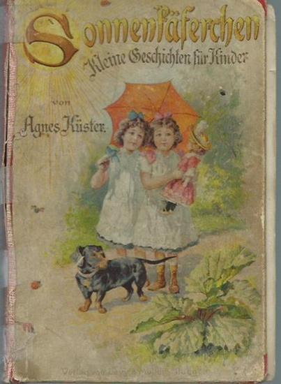 Küster, Agnes: Sonnenkäferchen. Kleine Geschichten zum Lesen und Erzählen für Kinder von fünf bis acht Jahren.
