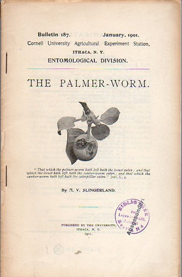 Slingerland, M. V.: The Palmer-worm. (= Bulletin 187, January 1901. Cornell University Agricultural Experiment Station, Ithaca N. Y., Entomological division).